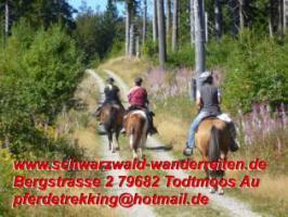 Foto 47 Geschenkidee für Reiter, Wanderreiter, Freizeitreiter - Wanderitt ab Todtmoos Au