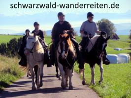 Foto 48 Geschenkidee für Reiter, Wanderreiter, Freizeitreiter - Wanderitt ab Todtmoos Au