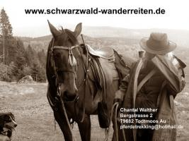 Foto 50 Geschenkidee für Reiter, Wanderreiter, Freizeitreiter - Wanderitt ab Todtmoos Au