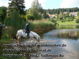 Foto 53 Geschenkidee für Reiter, Wanderreiter, Freizeitreiter - Wanderitt ab Todtmoos Au