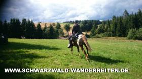 Foto 73 Geschenkidee für Reiter, Wanderreiter, Freizeitreiter - Wanderitt ab Todtmoos Au