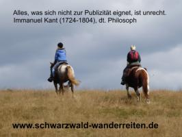 Foto 79 Geschenkidee für Reiter, Wanderreiter, Freizeitreiter - Wanderitt ab Todtmoos Au