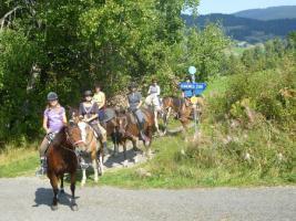 Foto 2 Geschenkidee für Reiterinnen / Reiter Abenteuer Wanderreiten im Naturpark Südschwarzwald