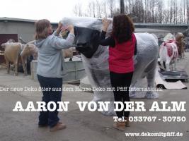 Foto 4 Gigant Deko Kuh oder eine Holstein Deko Kuh lebensgross ?