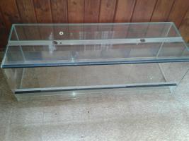 Glasterrarium für Reptilien