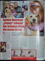 Foto 4 Golden Retriever Welpen