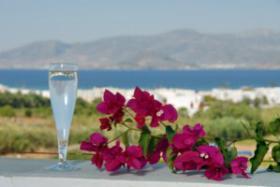 Foto 5 Griechenland - Naxos - Kykladen Ferienapartments Sofia Studios