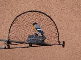 Große vogelfalle 40 x30 cm stieglitz dompfaff erlezeisig