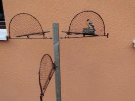 Foto 3 Große vogelfalle 40 x30 cm stieglitz dompfaff erlezeisig