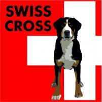 Foto 3 Grosser Schweizer Sennenhund