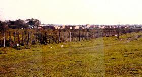Foto 2 Großes Baugrundstück in der Nähe von Asuncion, auch teilbar