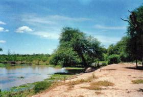 Großes Grundstück mit Flugpiste in Paraguay