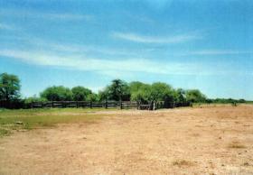 Foto 2 Großes Grundstück mit Flugpiste in Paraguay