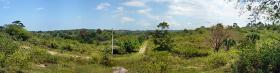 Foto 2 Großes Grundstück mit Meerblick