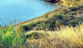 Foto 4 Grundstück auf Kefalonia/Griechenland