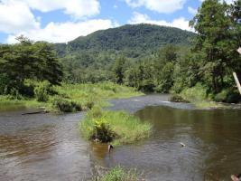 Grundstueck Madagascar Ranomafana