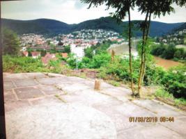 Foto 2 Grundstück mit Panaramablick in Eberbach bei Mosbach