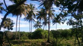Grundstück in Strandnähe im Bereich Sabaneta