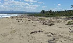 Foto 2 Grundstück in Strandnähe im Bereich Sabaneta