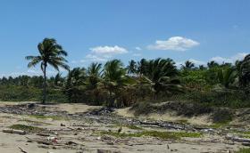 Foto 3 Grundstück in Strandnähe im Bereich Sabaneta
