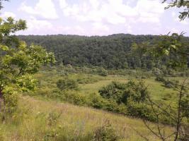 Foto 2 Grundstück zu verkaufen