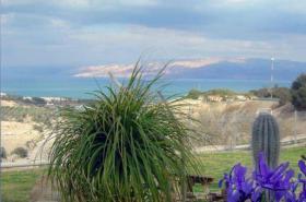 Gruppenreise am Toten Meer Israel - Wellness / Hautkrankheiten Kur
