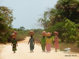Guinea-Bissau Reisen - Westafrika individuell erleben