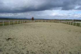 Foto 3 Gutshof in Bayern zur Pferdehaltung mit Reitplatz