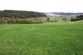Foto 7 Gutshof in Bayern zur Pferdehaltung mit Reitplatz