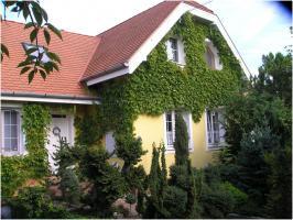 Gyöngyösfalu, Ungarn: Zweistöckiges Haus zu verkaufen