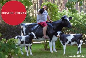 HALLO BINGEN … Sie möchten gern mal unser hauseigenes Holstein - Friesian Deko Kuh lebensgross - Modell in den unterschiedlichsten Ausführungen kennenlernen … www.dekomitpfiff.de / Tel. 033767 - 30750 / info@dekomitpfiff.de