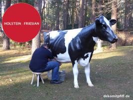 Foto 3 HALLO BINGEN … Sie möchten gern mal unser hauseigenes Holstein - Friesian Deko Kuh lebensgross - Modell in den unterschiedlichsten Ausführungen kennenlernen … www.dekomitpfiff.de / Tel. 033767 - 30750 / info@dekomitpfiff.de