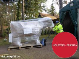 Foto 5 HALLO BINGEN … Sie möchten gern mal unser hauseigenes Holstein - Friesian Deko Kuh lebensgross - Modell in den unterschiedlichsten Ausführungen kennenlernen … www.dekomitpfiff.de / Tel. 033767 - 30750 / info@dekomitpfiff.de