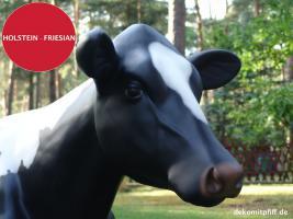 Foto 6 HALLO BINGEN … Sie möchten gern mal unser hauseigenes Holstein - Friesian Deko Kuh lebensgross - Modell in den unterschiedlichsten Ausführungen kennenlernen … www.dekomitpfiff.de / Tel. 033767 - 30750 / info@dekomitpfiff.de