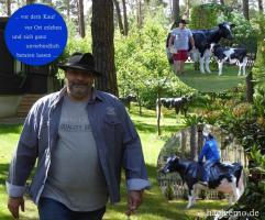 Foto 7 HALLO Buxtehude … Sie möchten gern mal unser hauseigenes Holstein - Friesian Deko Kuh lebensgross - Modell in den unterschiedlichsten Ausführungen kennenlernen … www.dekomitpfiff.de / Tel. 033767 - 30750 / info@dekomitpfiff.de