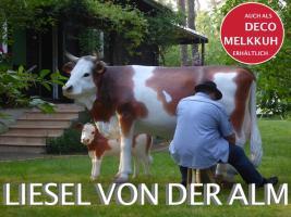 HALLO Mühlhausen - HALLO THÜRINGEN  - Deko Kuh lebensgross / unseres hauseigenes Modell - Liesel von der Alm oder unseres hauseigenes Holstein - Friesian Deko Kuh lebensgross - Modell oder ... www.dekomitpfiff.de / Tel. 033767 - 30750