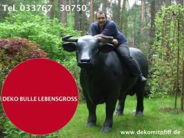 Foto 12 HALLO Mühlhausen - HALLO THÜRINGEN  - Deko Kuh lebensgross / unseres hauseigenes Modell - Liesel von der Alm oder unseres hauseigenes Holstein - Friesian Deko Kuh lebensgross - Modell oder ... www.dekomitpfiff.de / Tel. 033767 - 30750