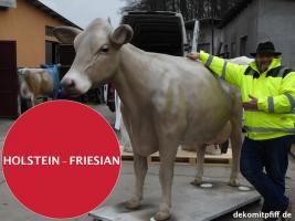 Foto 8 HALLO SASSNITZ … Sie möchten gern mal unser hauseigenes Holstein - Friesian Deko Kuh lebensgross - Modell in den unterschiedlichsten Ausführungen kennenlernen … www.dekomitpfiff.de / Tel. 033767 - 30750 / info@dekomitpfiff.de