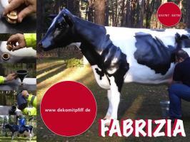 Foto 11 HALLO SASSNITZ … Sie möchten gern mal unser hauseigenes Holstein - Friesian Deko Kuh lebensgross - Modell in den unterschiedlichsten Ausführungen kennenlernen … www.dekomitpfiff.de / Tel. 033767 - 30750 / info@dekomitpfiff.de