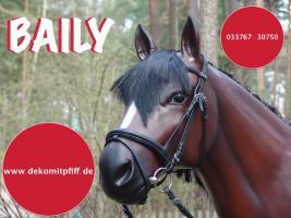 Foto 10 HALLO Sachsen - Anhalt - Deko Kuh lebensgross / Liesel von der Alm oder Edelweiss von der Alm oder Deko Pferd lebensgross … www.dekomitpfiff.de / Tel. 033767 - 30750 / E - Mail. info@dekomitpfiff.de