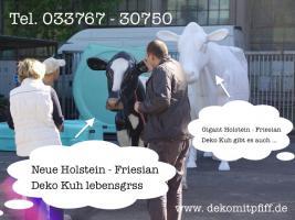 Foto 2 HASSTE NOCH KEINEN DEKO KUH IM GARTEN??? DANN HOL DIR DOCH EINEN GIGANT KUH…www.dekomitpfiff.de