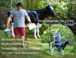 Foto 4 HAST SAGT DIR DAS WORT HOLSTEIN - RICHTIG  - HOLSTEIN _ FRIESIAN DEKO KUH - UND WILLST EINE ...