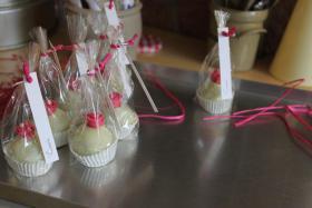 Foto 9 HAUSGEMACHT: Cake - Pops, die kleine Sünde am Stiel !