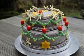 Foto 15 HAUSGEMACHT: Geburtstags - Überraschungs - Torten, die besondere Geschenkidee für besondere Menschen und besondere Gelegenheiten !