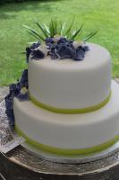 Foto 81 HAUSGEMACHT: Hochzeitstorten ganz individuell und geschmackvoll ! Nicht nur von außen !