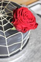 Foto 96 HAUSGEMACHT: Hochzeitstorten ganz individuell und geschmackvoll ! Nicht nur von außen !