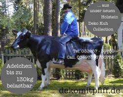 Foto 2 HORSE TORNADO UND HOLSTEIN ADELCHEN UND BEIDE VOR DEINEN BÜRO ...