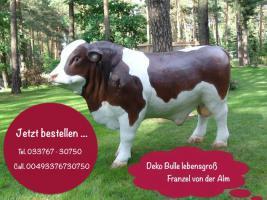Foto 3 Hallo Österreich … was hält Ihr von  Deko Bullen in euren Gärten ...