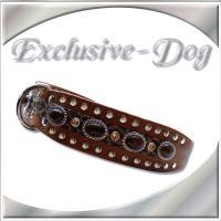 Halsbänder Leder Halsbänder EDEL Chic Exclusive Nietenhalsband by EXCLUSIVE-DOG
