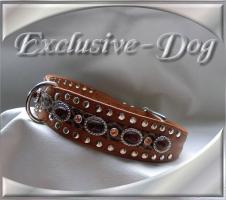 Foto 2 Halsbänder Leder Halsbänder EDEL Chic Exclusive Nietenhalsband by EXCLUSIVE-DOG